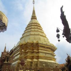 Golden Temples, Spring Rolls and 'Dog Corner'