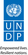 Bigger UNDP_new